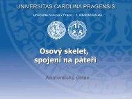 Šn - Anatomický ústav 1.LF UK - Univerzita Karlova
