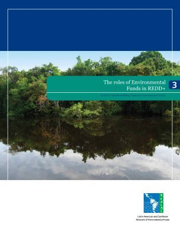 The roles of Environmental Funds in REDD+