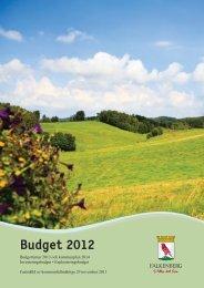 Budget 2012 - Falkenbergs kommun