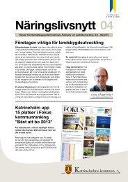Näringslivsnytt nr 4 2013 - Katrineholms kommun