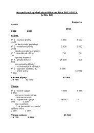 Rozpočtový výhled obce Bílov na léta 2007-2010