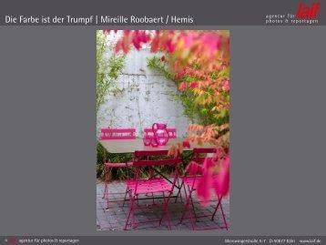 Die Farbe ist der Trumpf | Mireille Roobaert / Hemis