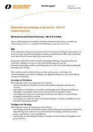 Beteendevetenskapliga programmet, 180 hp (Västerås) (pdf 128 kB)