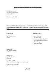 Návrh na založenie obchodnej spoločnosti pre výstavbu ... - Petržalka