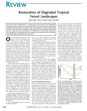 Restoration of degraded tropical forest landscapes... - Keck Science ...