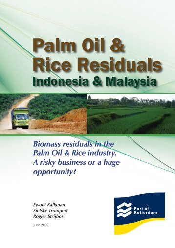 Biomass residuals in the Palm Oil & Rice ... - CMT Conferences