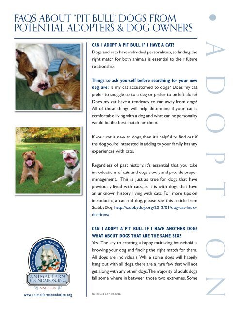 "FaQS aboUt ""pit bULL†dogS FroM potentiaL adopterS & dog"