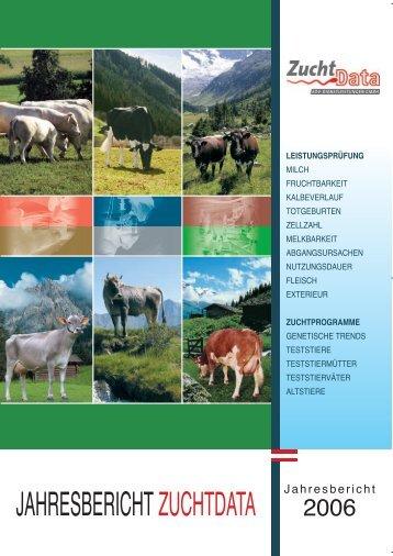 Jahresbericht zum Download als PDF