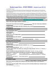 Erasmus student report