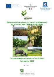 aggiornamento rapporto valutazione intermedia 2012 - Regione ...