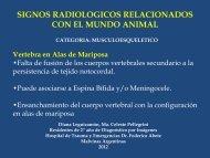 signos radiologicos relacionados con el mundo animal - Congreso ...
