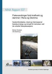 Fiskevandringer forbi kraftverk og dammer i Rena og Glomma - NINA