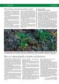 Sinu Mets-mai2010 - Erametsakeskus - Page 4