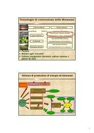 Tecnologie di conversione delle Biomasse - Centro CISA