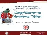 Campylobacter ve Aeromonas Türleri, Prof. Dr. Betigül Öngen - Türk ...