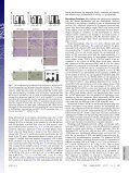 Inflammation and adipose tissue macrophages in lipodystrophic mice - Page 4