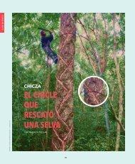 cronica-ambiental-13-chicza