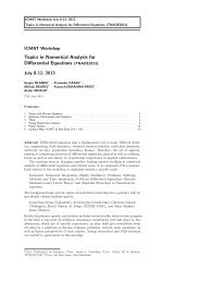 Topics in Numerical Analysis for Differential Equations ... - ICMAT