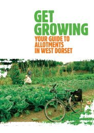 guide to allotments in West Dorset (pdf, 5Mb ... - Dorsetforyou.com