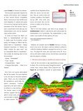 OpenOf fice - NetBeans - Page 6