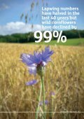 Download this publication - Plantlife - Page 5