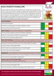 Purchasing checklist for breeding cattle - Eblex