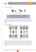 Learning Theories - Cognitive Learning Theories CHAPTER - Page 7