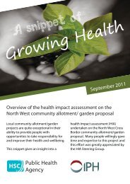 4 Page's Front - Institute of Public Health in Ireland