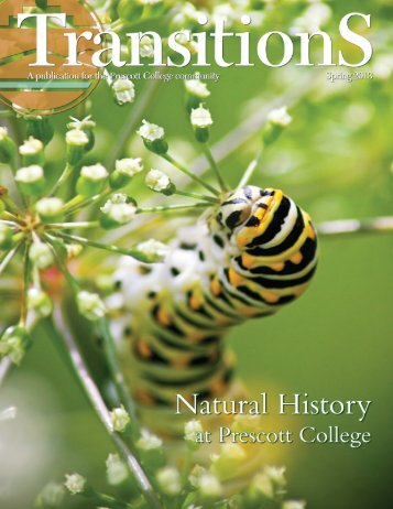 Transitions Magazine Spring 2013 - Prescott College