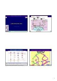 MECCANISMI DI ENTRATA - Sezione di Microbiologia