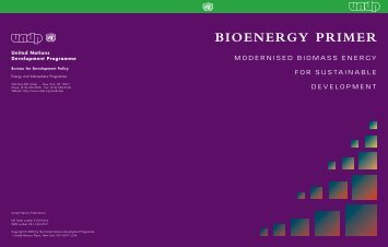 Modernised Biomass Energy For Sustainable Development