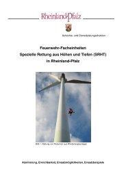 Leitstelleninfo SRHT Februar 2011 - Aufsichts - in Rheinland-Pfalz