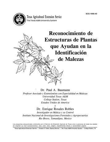 Reconocimiento de Estructuras de Plantas que Ayudan en la ...