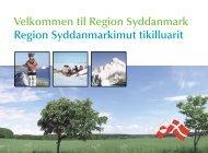 Velkommen til Region Syddanmark - Socialt udsatte grønlændere