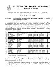 Delibera Consiglio Comunale n. 10 del 26/04/2013 - Istituzione ...