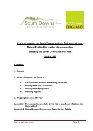 Natural England Planning Protocol - Appendix 1 - South Downs ...