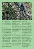vn3_10:Opmaak 1.qxd - Vrienden van Blijdorp - Page 7