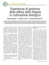 Esperienze di gestione della difesa della fragola in coltivazione ...