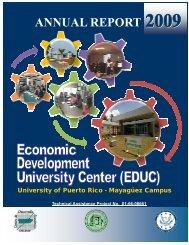 final report 2009 - UPRM
