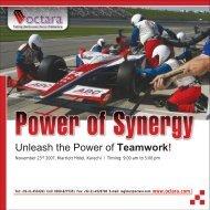 Power of Synergy - Octara.com
