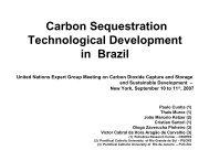 Carbon Sequestration Technological Development in Brazil