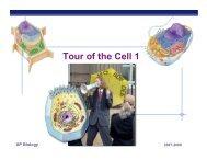 02Ch05organelles1200.. - Explore Biology
