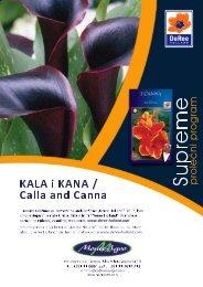 Kale i kane - SUPREME(565KB) - Monte Agro