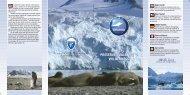 2901 Clean up Svalb. folder - Sysselmannen