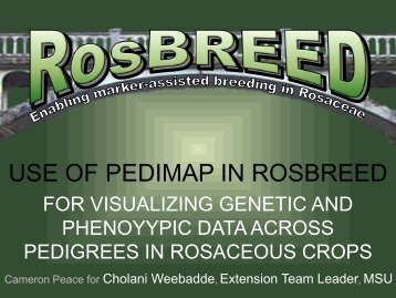 Use of PediMap in RosBREED for visualizing genetic and ...