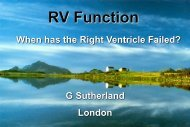 RV Systolic Function - RM Solutions