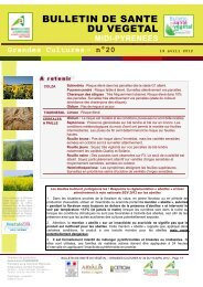 n° 20 - Chambre régionale d'agriculture Midi-Pyrénées