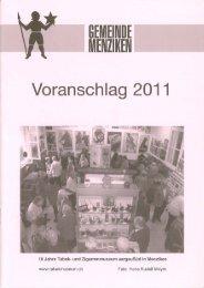PDF-Dokument 'Voranschlag_2011_Menziken