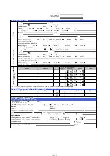 Formulario Credito Individual abril2009 - BDP