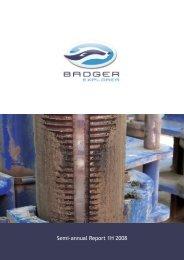 BXPL H1 2008 (.pdf)